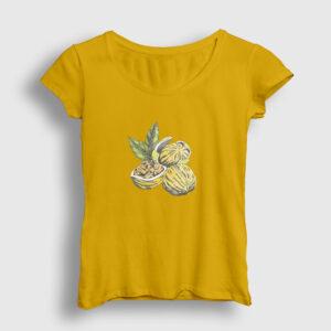 Ceviz Kadın Tişört sarı