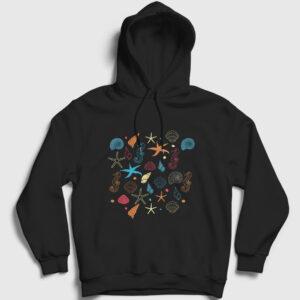 Deniz Kabukları Kapşonlu Sweatshirt siyah