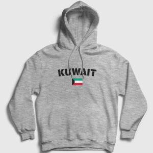 Kuveyt Kapşonlu Sweatshirt gri kırçıllı